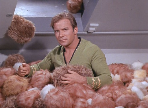 TOS_2x13_TheTroubleWithTribbles0381