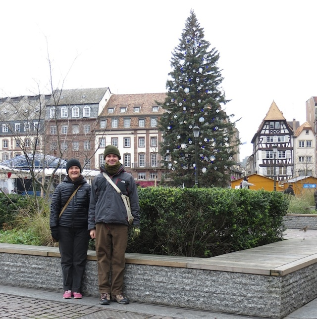 Strasbourg Christmas Tree Tracy Aaron
