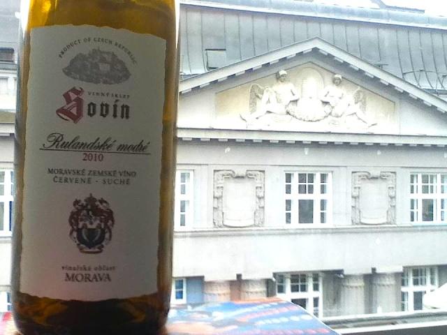Sovin Pinot Noir 2010 Czech