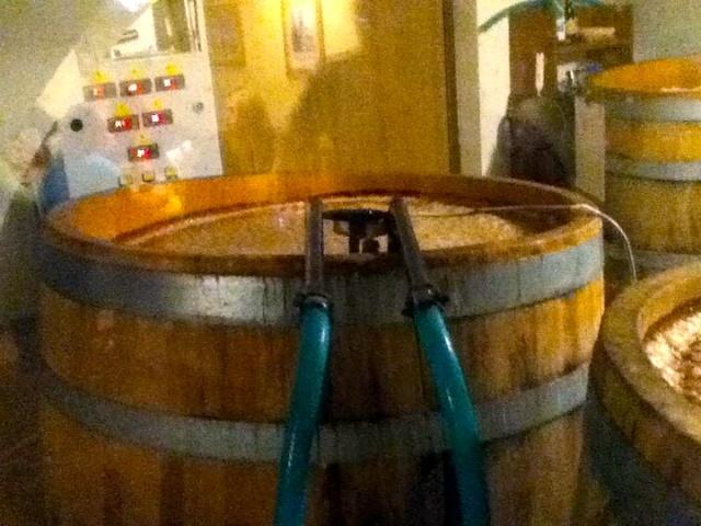 U Medvidku Brewery Barrel fermentors