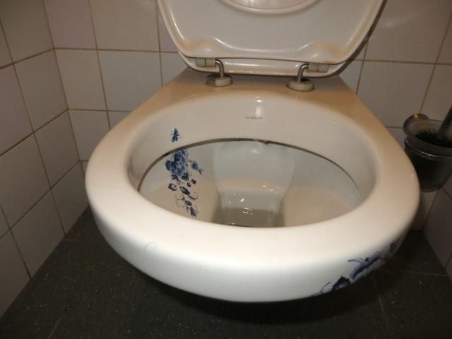 Delft toilet