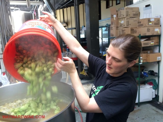 Tracy Adds Fresh Hops