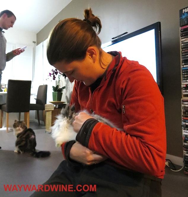 Tracy Amiens Bunny