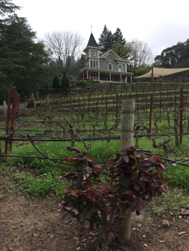 St Clement Winery