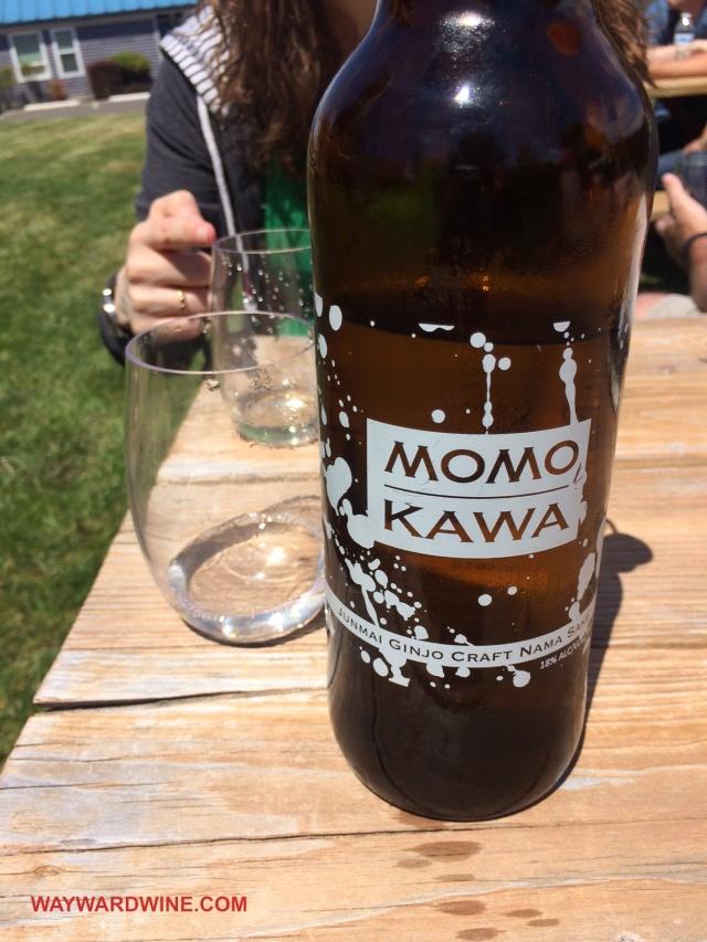 Momokawa Junmai Ginjo Nama
