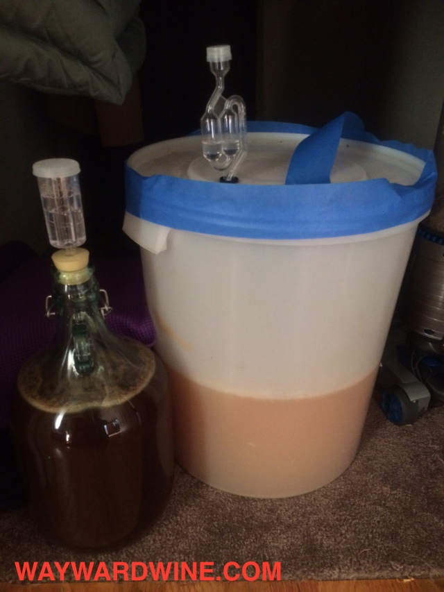 ferment-tank-hard-cider