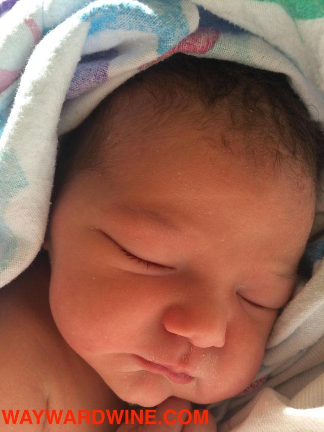 baby-alexandria