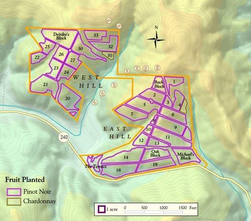 shae-vineyard-map