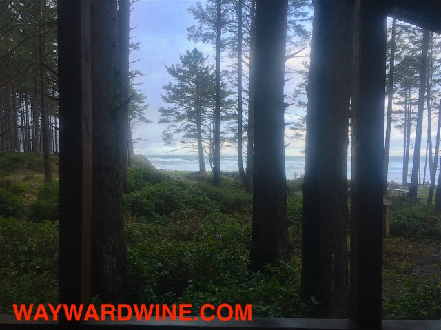 Ocean View Cape Lookout
