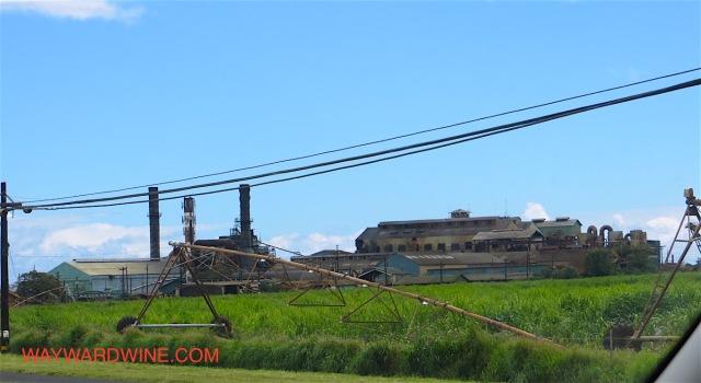 Sugar Cane Factory Maui