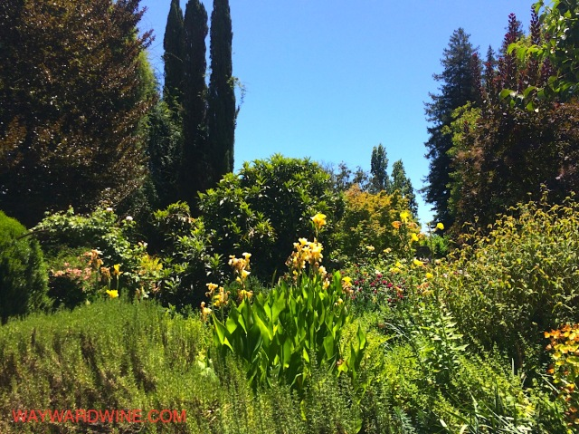 Trefethen Garden