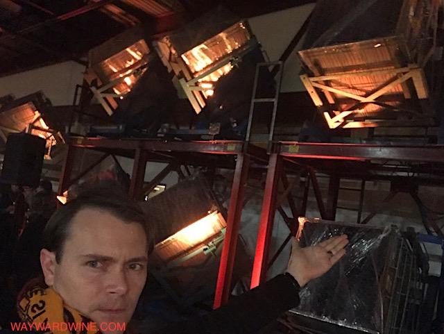 Gyroscopes Argyle Sparkling